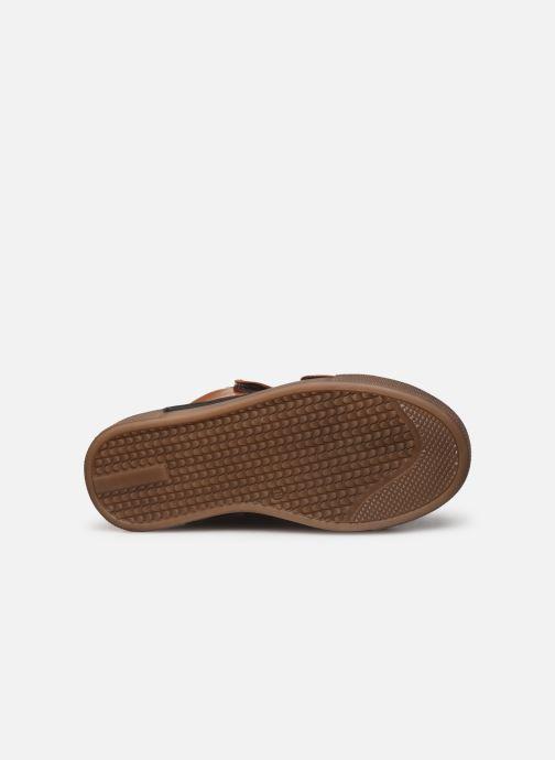 Sneakers Romagnoli 4765-838 Brun se foroven