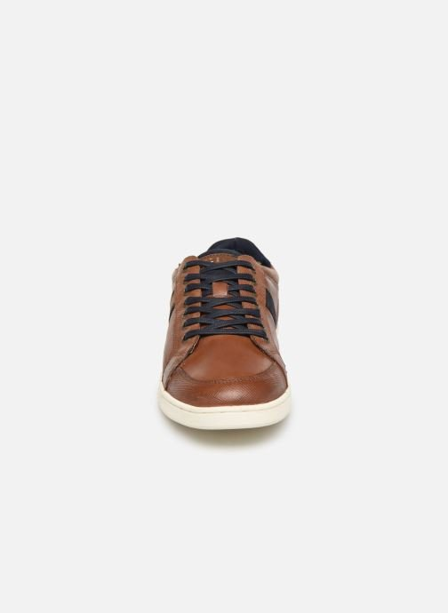 Trainers Redskins Dalban Brown model view