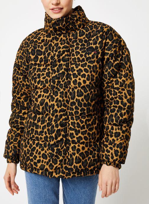 Vêtements Schott Doudounne Confort Fit Nebraska W Marron vue détail/paire