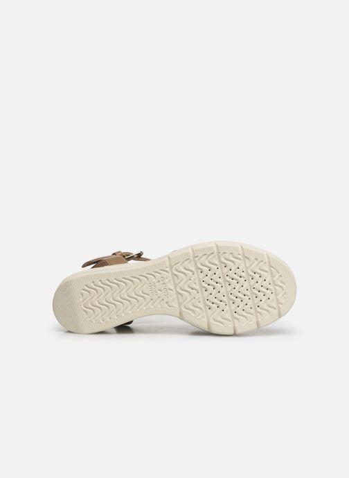 Sandales et nu-pieds Geox D TORRENCE B D92CPB Or et bronze vue haut