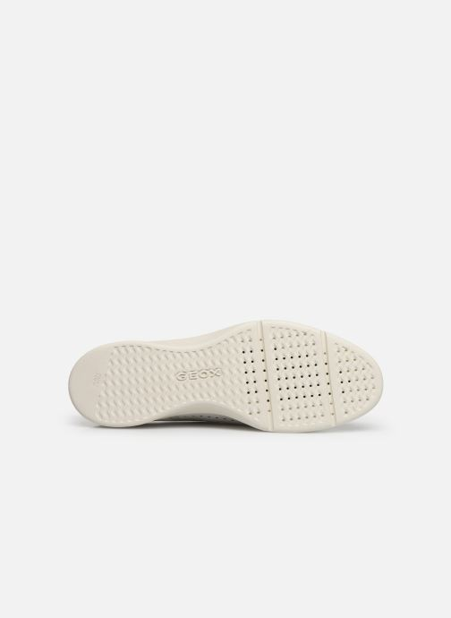 Lace-up shoes Geox D ARJOLA C D92DHC White view from above