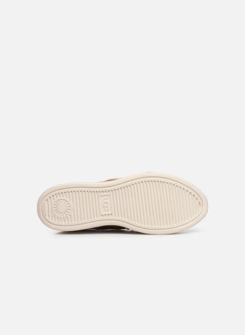 Baskets UGG W Ashby Spill Seam Sneaker Marron vue haut