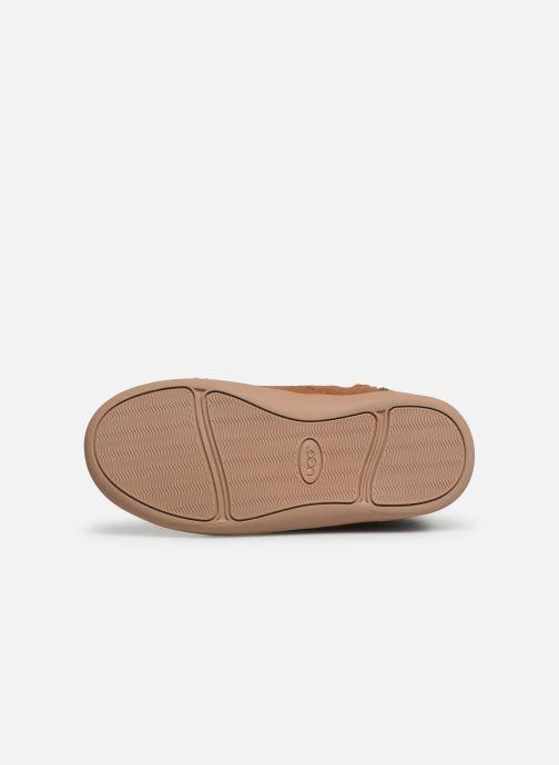 Stiefel UGG T Ager braun ansicht von oben