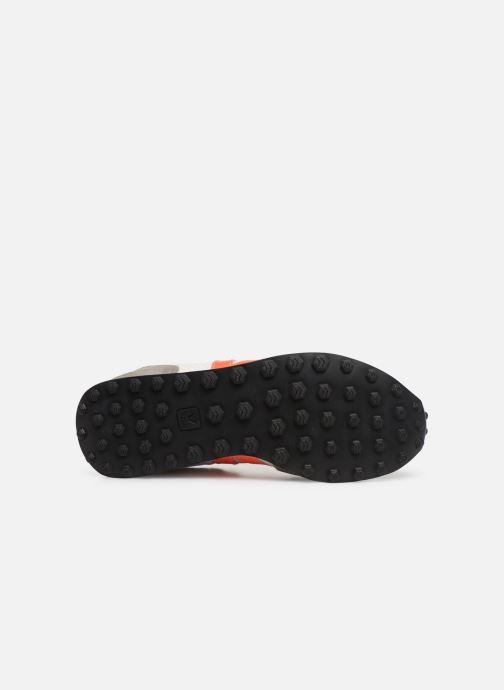 Sneaker Veja Riobranco grau ansicht von oben