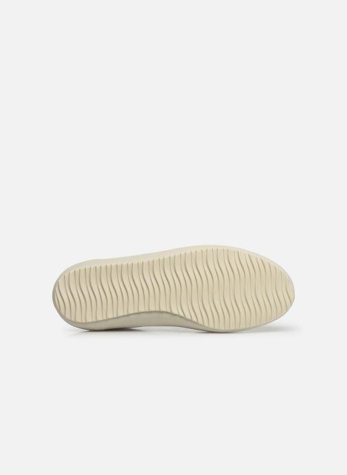Sneakers Veja Nova Bianco immagine dall'alto