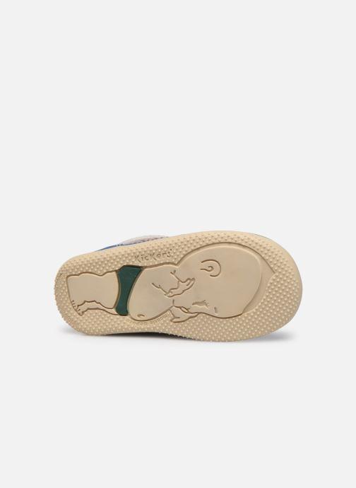 Boots en enkellaarsjes Kickers Biboy Grijs boven