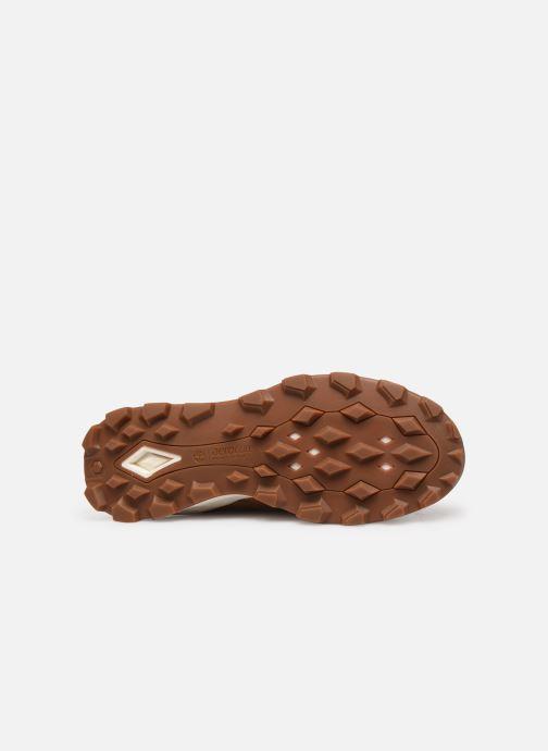 Boots en enkellaarsjes Timberland Brooklyn 6 inch Boot Bruin boven