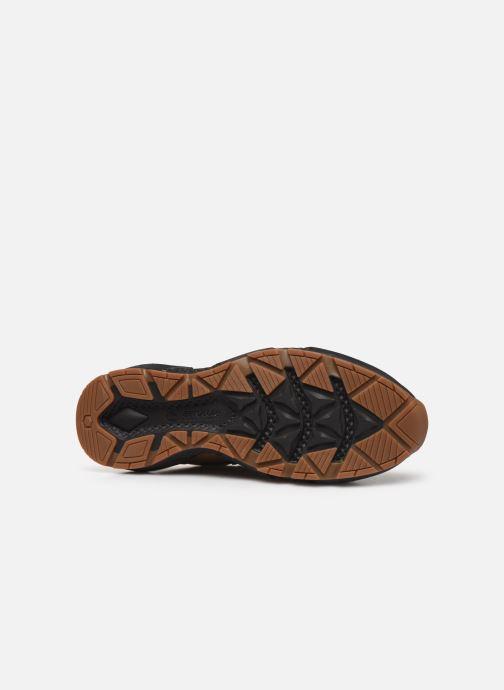 Sneaker Timberland Ripcord Mid Hiker braun ansicht von oben