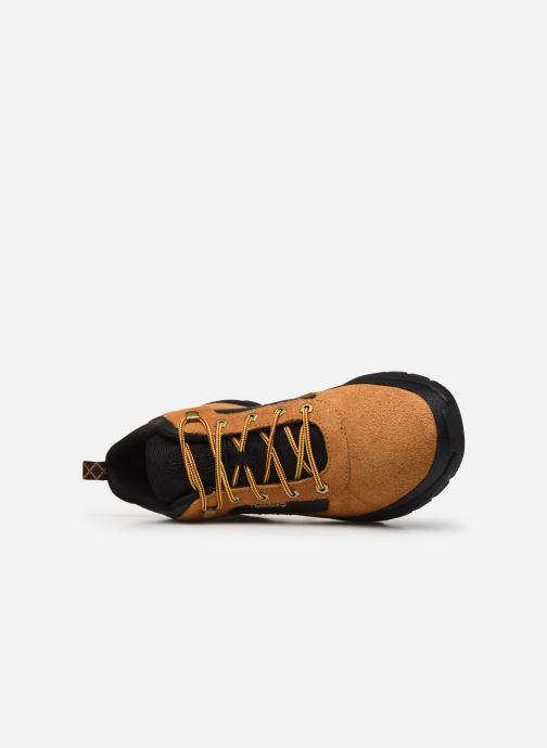 Sneakers Timberland Field Trekker Low Bruin links