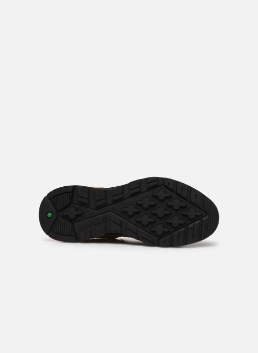 Sneakers Timberland Field Trekker Low Bruin boven