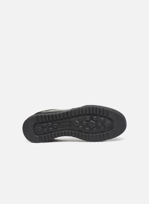 Sneakers Kickers ATLANTE Nero immagine dall'alto