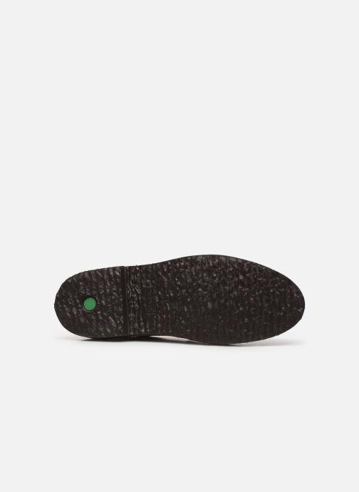 Chaussures à lacets Kickers TRACY H Marron vue haut