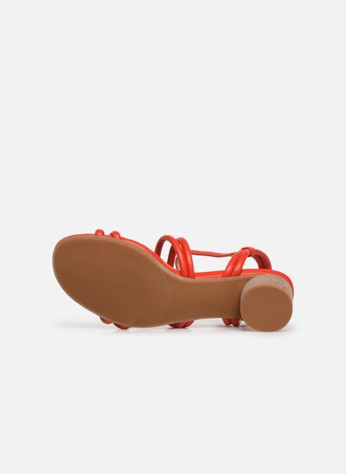 Sandali e scarpe aperte Shoe the bear AYA KNOT SANDAL Rosso immagine dall'alto
