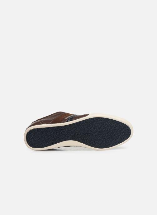 Sneakers Levi's TURLOCK 2 Brun se foroven