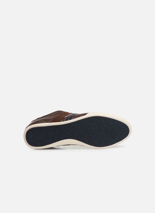 Baskets Levi's TURLOCK 2 Marron vue haut