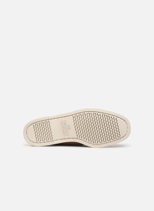 Chaussures à lacets Sebago Docksides Portland Crazy H C Marron vue haut