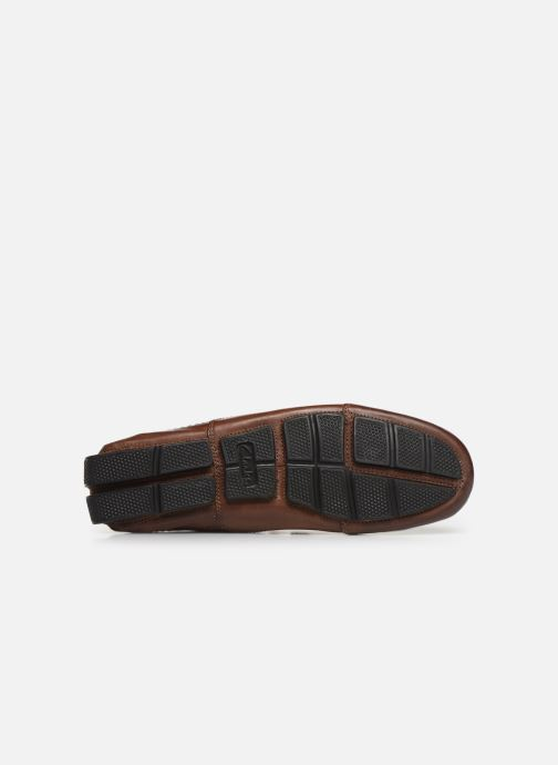 Loafers Clarks Ashmont Way Brown view from above