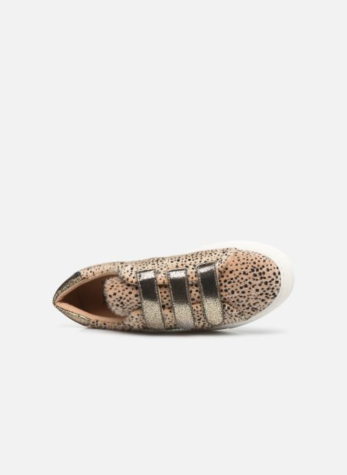 Trainers Vanessa Wu BK2036 Beige view from the left