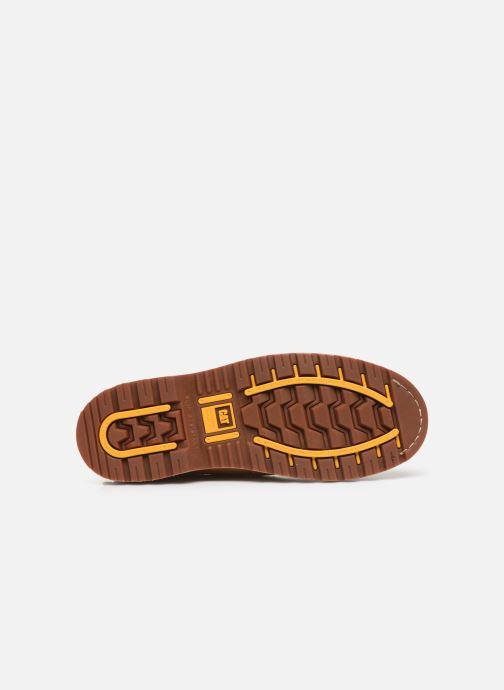 Stiefeletten & Boots Caterpillar Holton S3 Hro Src braun ansicht von oben