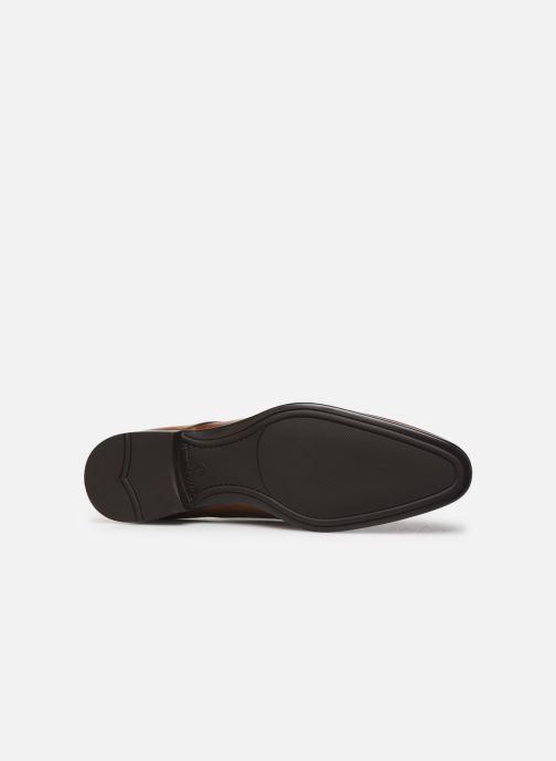 Chaussures à lacets Sturlini OVIEDO 6450 Marron vue haut
