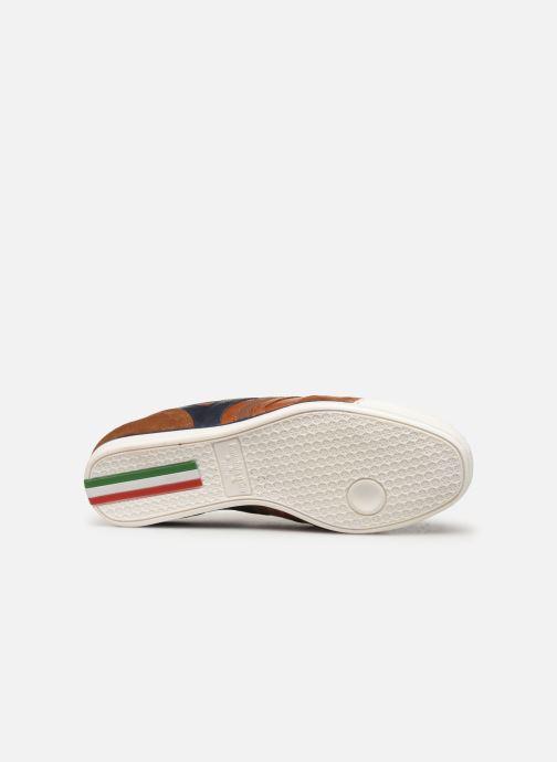 Baskets Pantofola d'Oro VASTO UOMO LOW Marron vue haut