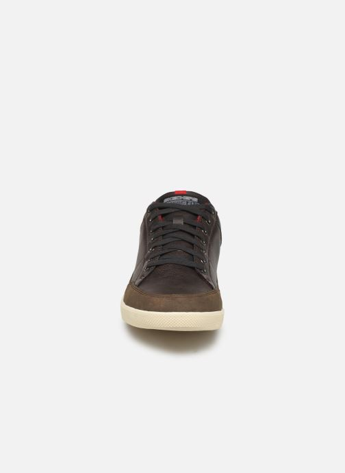 Trainers Skechers Placer Maneco Brown model view