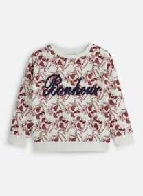 Sweatshirt Nkfnomina Ls Sweat Bru