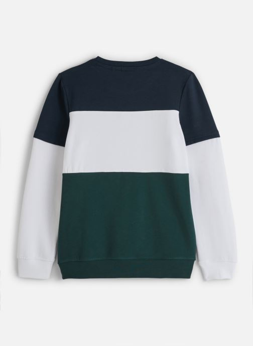 Vêtements Name it Sweatshirt Nkmlomar Ls Sweat Box Bru Vert vue bas / vue portée sac