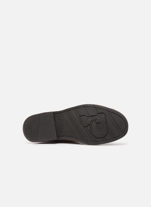 Stiefeletten & Boots Polo Ralph Lauren Talan Chlsea  Suede braun ansicht von oben
