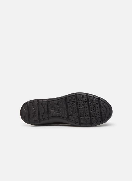 Sneaker Geox U LEITAN braun ansicht von oben