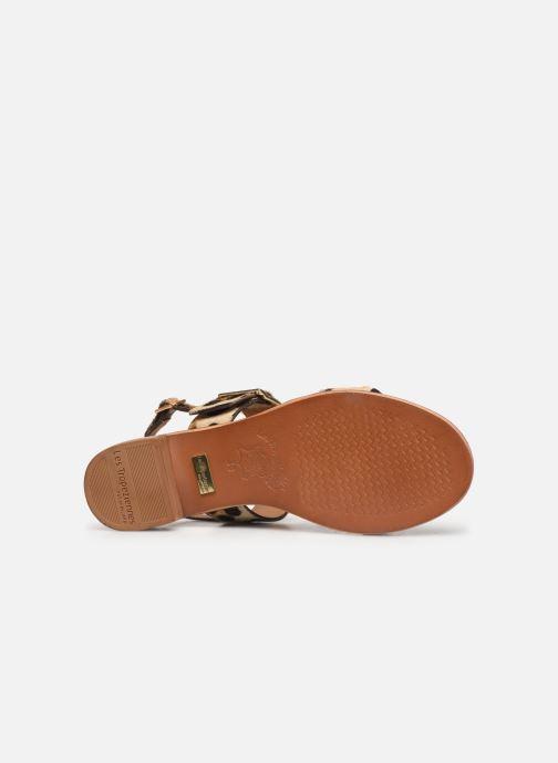 Sandales et nu-pieds Les Tropéziennes par M Belarbi Hideo Beige vue haut