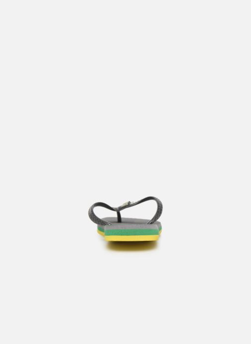 Slippers Havaianas Brasil Layers F Grijs rechts
