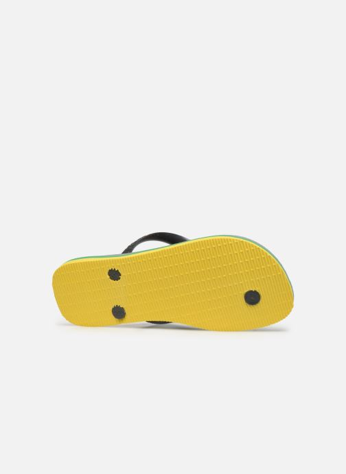 Slippers Havaianas Brasil Layers F Grijs boven