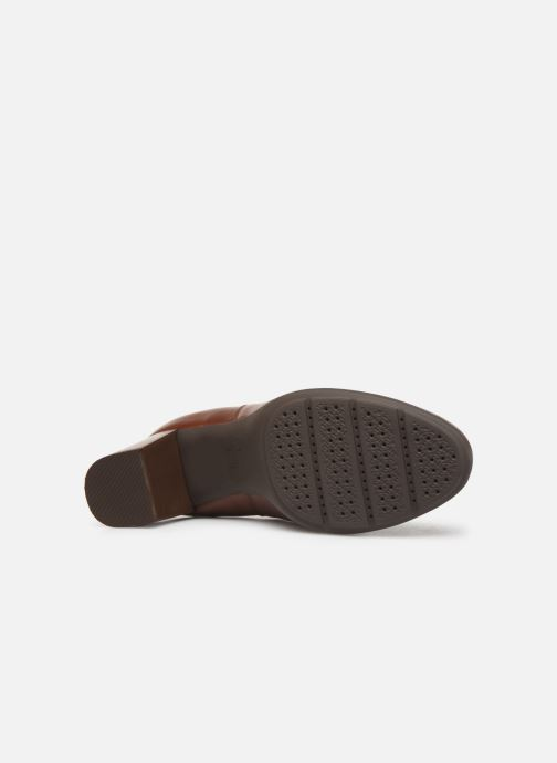 Ankle boots Geox DNEWANNYA Brown view from above