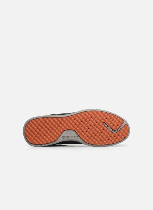 Sneaker Geox U SNAKE.2 A blau ansicht von oben