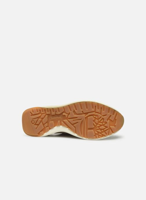 Trainers Timberland Kiri Up New Leather Ox Beige view from above