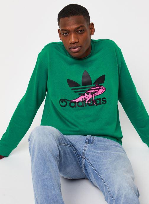 Vêtements adidas originals Sweatshirt Vert vue détail/paire