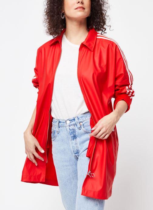 Tøj adidas originals Jacket Rød detaljeret billede af skoene