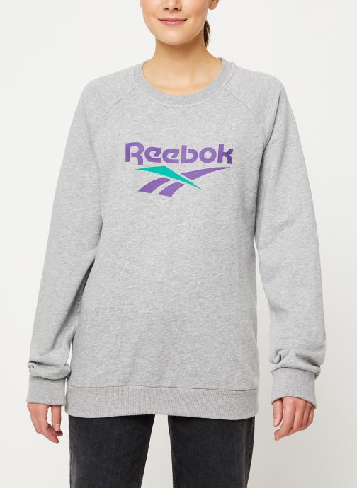 Vêtements Reebok Cl V Unisex Crew W Gris vue détail/paire