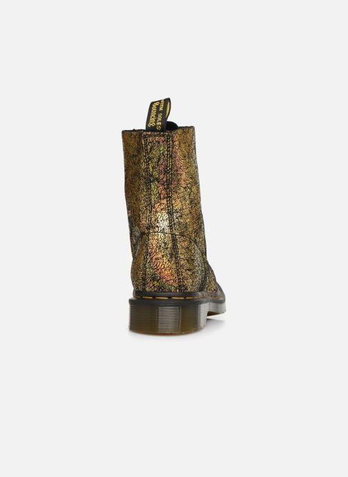 Bottines et boots Dr. Martens 1460 Iridescent Or et bronze vue droite