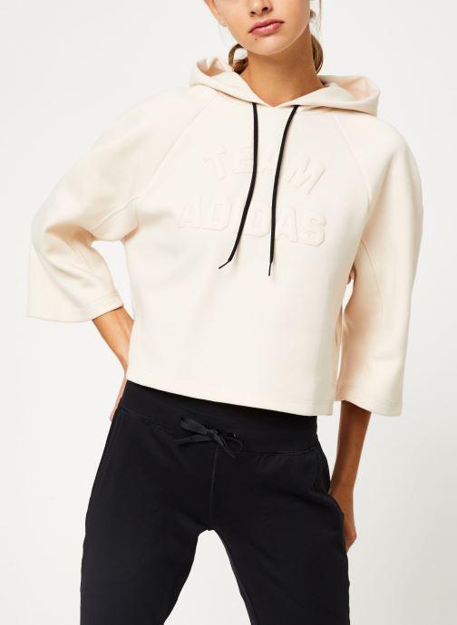 Vêtements Accessoires W VRCT Hoodie
