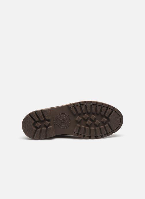 Bottines et boots Panama Jack Bota Panama C18 Noir vue haut