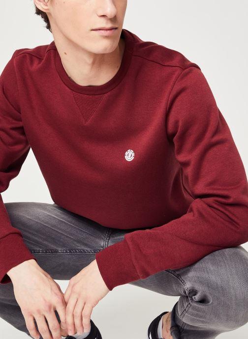 Vêtements Element Cornell Classic C Bordeaux vue détail/paire