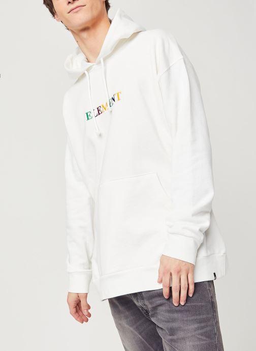 Vêtements Element Big Hoody Rainbow C Blanc vue droite