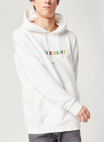 Tøj Accessories Big Hoody Rainbow C