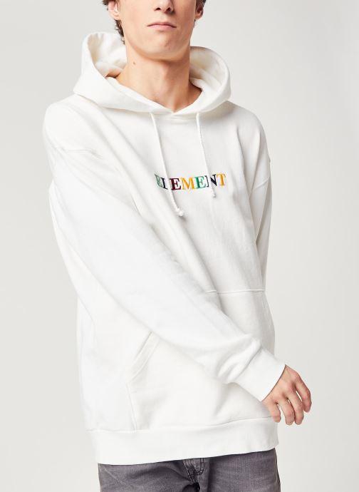 Vêtements Element Big Hoody Rainbow C Blanc vue détail/paire