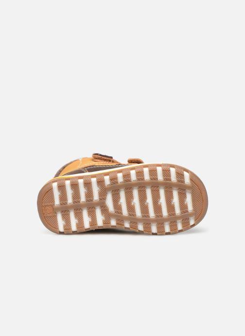 Bottines et boots Kimberfeel Mini Marron vue haut