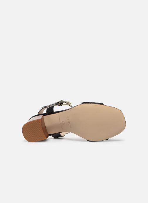 Sandali e scarpe aperte Schmoove Woman VENUS SANDALE PRINT CROCO Nero immagine dall'alto