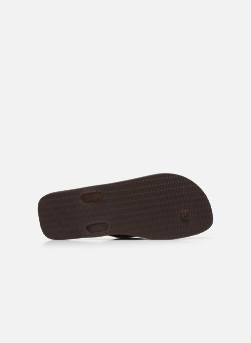 Tongs Havaianas HAV. URBAN BASIC II Marron vue haut