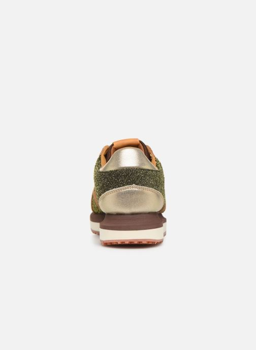 Trainers Pepe jeans Zion Lux Brown view from the right